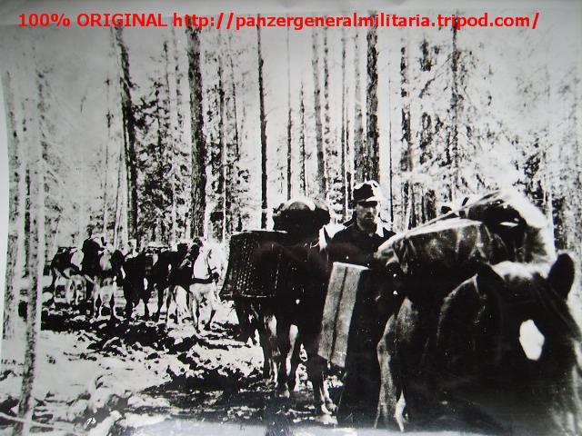 Los caballos en la guerra